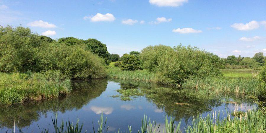 Tame Valley Wetlands | Warwickshire Wildlife Trust | Heritage Lottery Fund