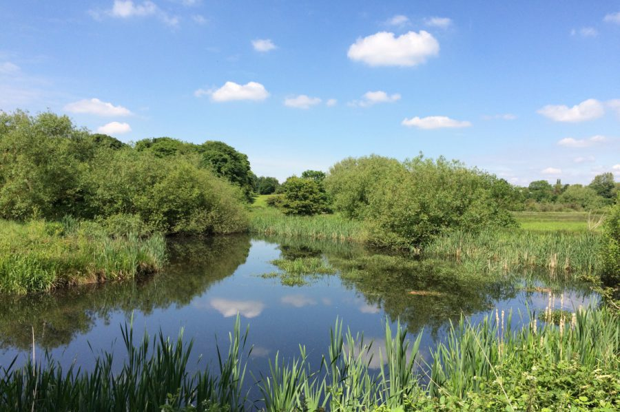 Tame Valley Wetlands | Warwickshire Wildlife Trust | Heritage Lottery Fund
