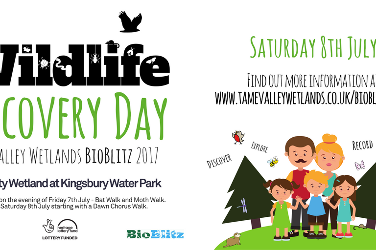 Tame Valley Wetlands | Wildlife Discovery Day - BioBlitz 2017