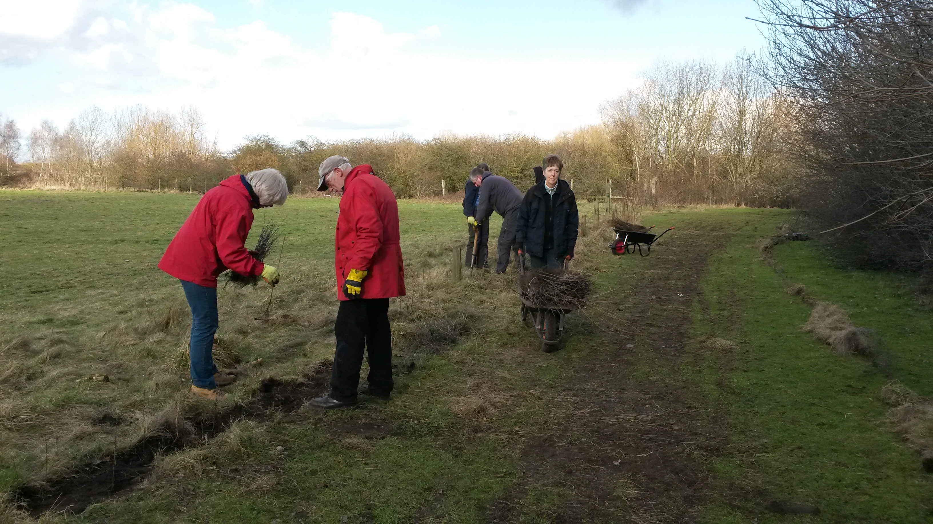 Tameforce volunteers planting a hedge in Castle Vale conservation area (Birmingham), © Tame Valley Wetlands, Warwickshire Wildlife Trust 2017