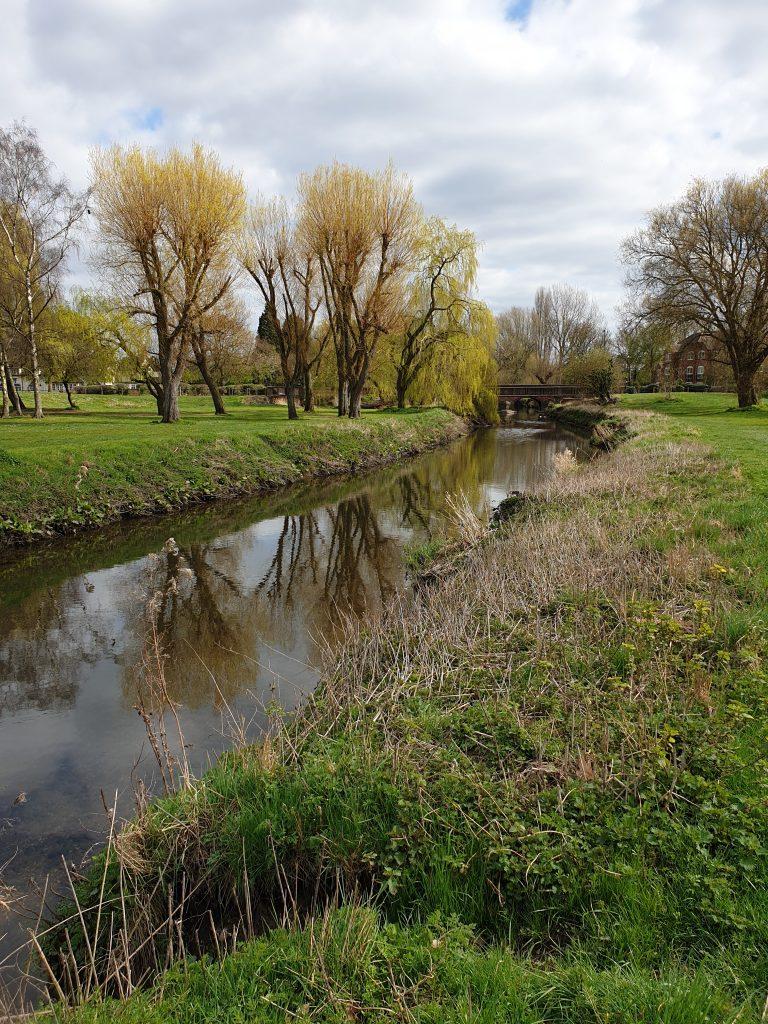 The River Cole