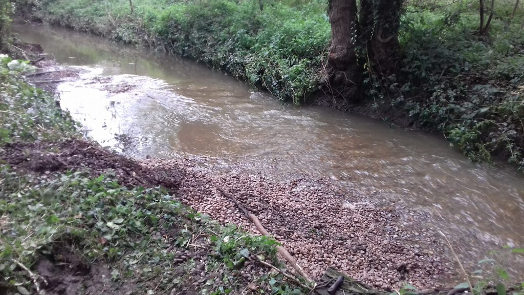 Gravel input into the River Blythe at Temple Balsall