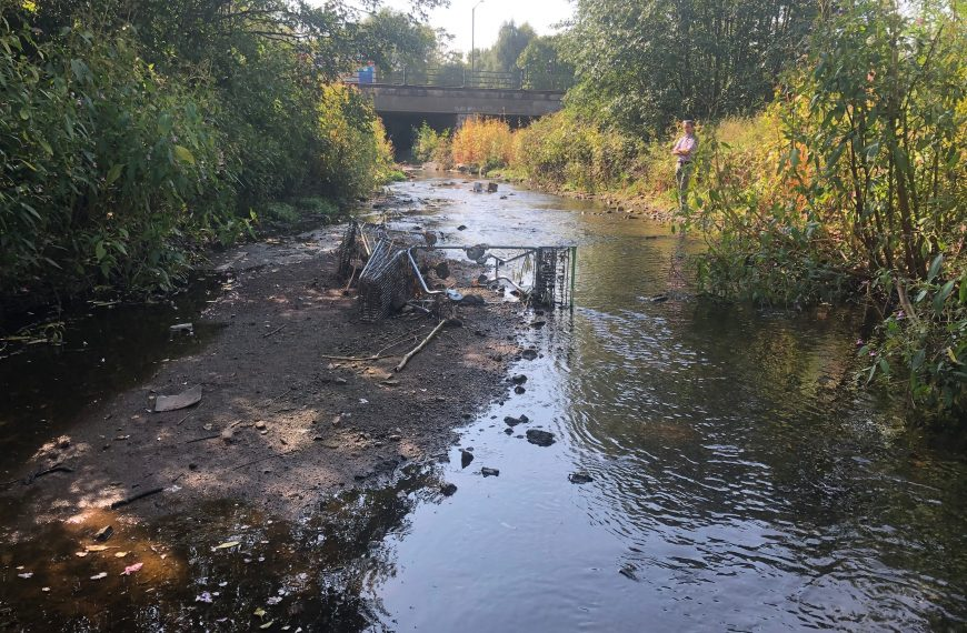 Love Your River Cole: Green Recovery Challenge Fund