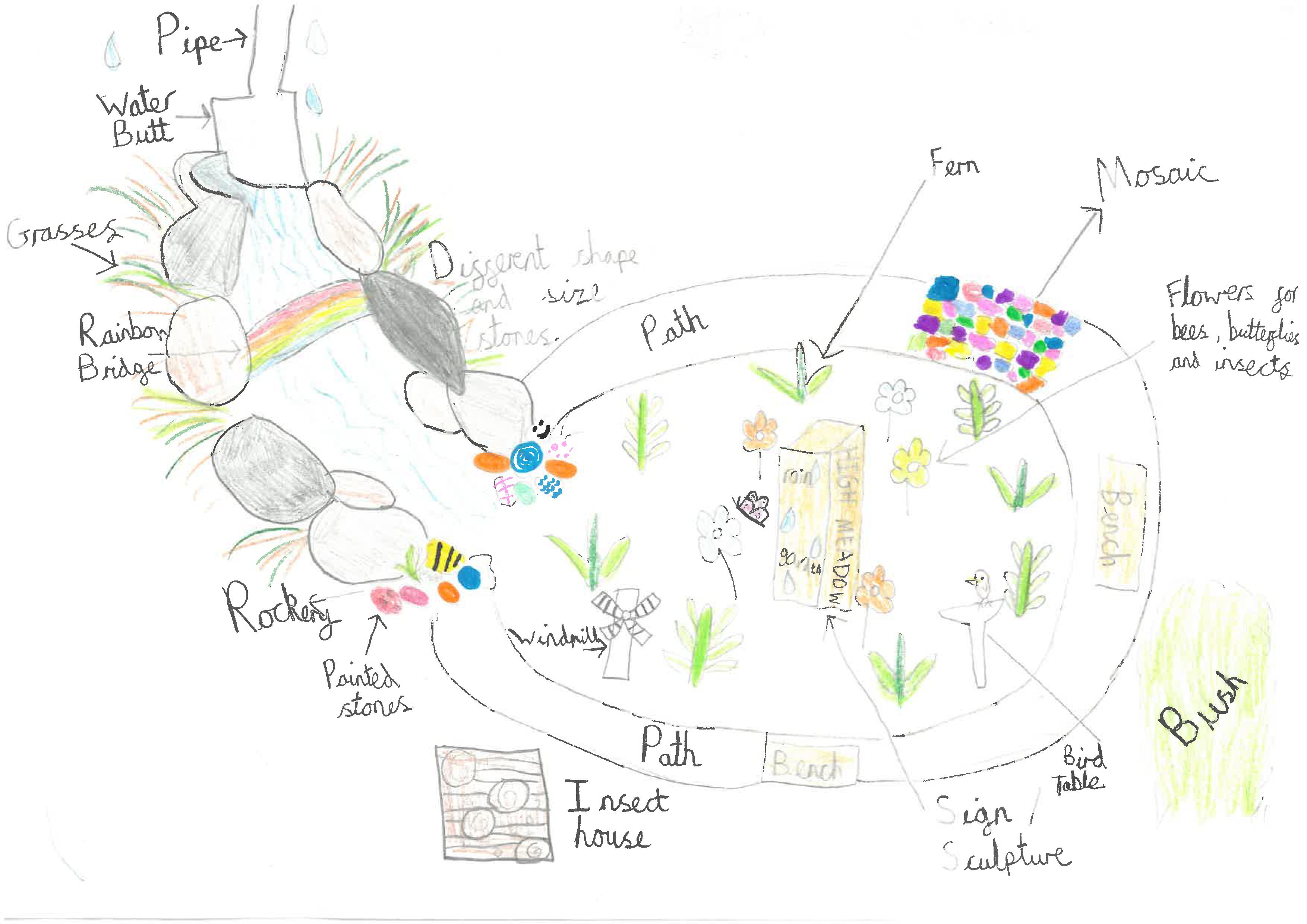 Designing a Rain Garden